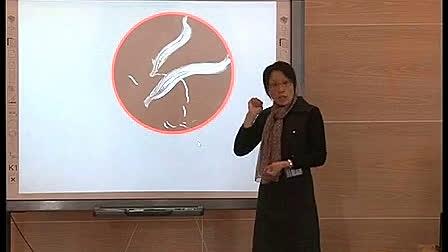 《小猫的生日》幼儿园电子白板优质课-谢海连