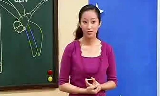 《蜻蜓飞飞》小学美术二年级上册优质课视频